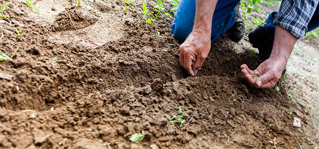 """Tim Spivey: What if Churches """"Grew Their Own Food?"""""""