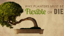 Why Planters Must Be Flexible or Die
