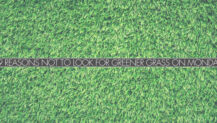 Real Talk Monday: 9 Reasons NOT to Look for Greener Grass on Mondays